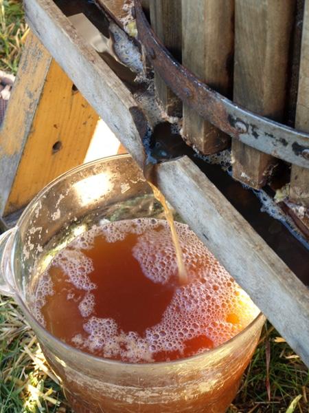 hard cider, hard apple cider, apple press, craft beer fans